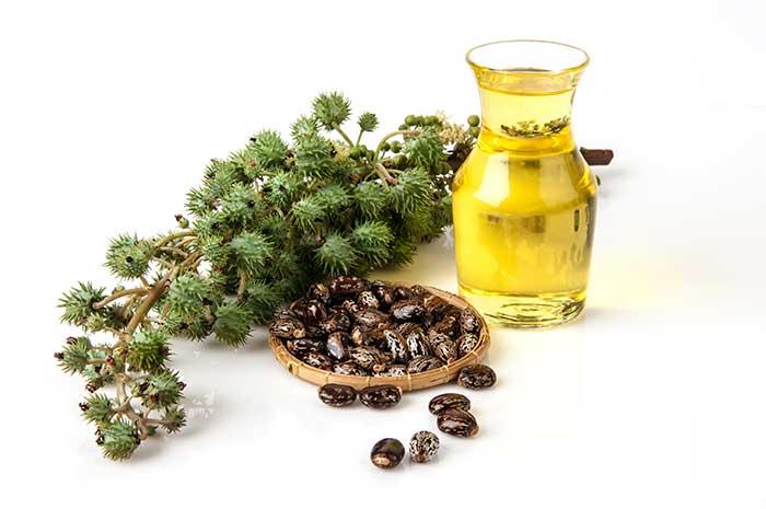 aloe vera et huile ricin pour la repousse des cheveux